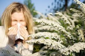 combatere alergii